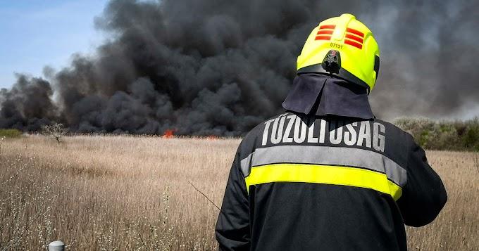 Tíz hektáron égett a gabona Nagytőkénél