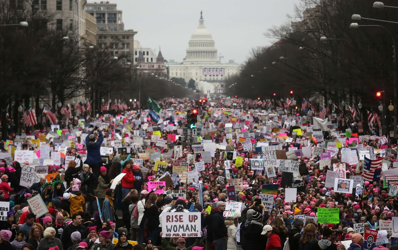 25 Of The Most Intriguing Pictures Of 2017 - Women's March on Washington