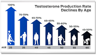 24 Hour Testosterone Transformation Plan (Solution Enclosed)