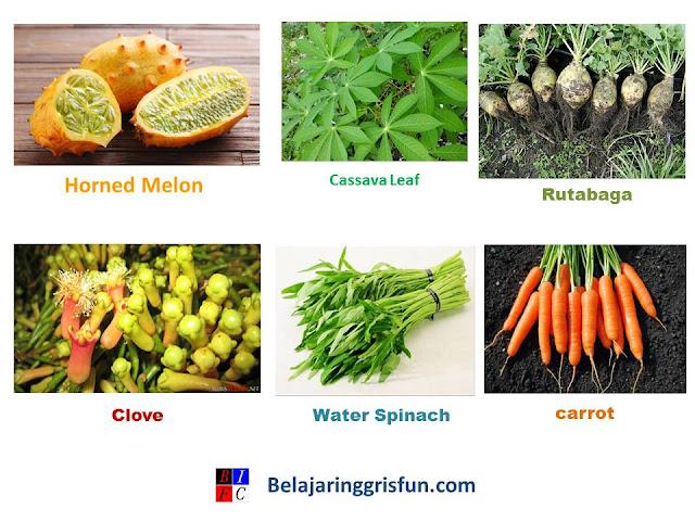 100 Nama-Nama Sayuran dan bumbu dapur dalam Bahasa Inggris