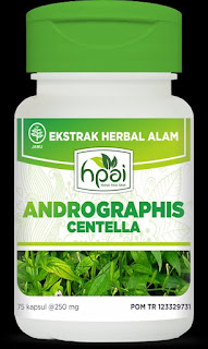 Andrographis Centella, Menjaga Kesehatan Liver