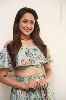 Actress Pragya Jaiswal Stills in Floral Dress at turodu Interview  0001.JPG