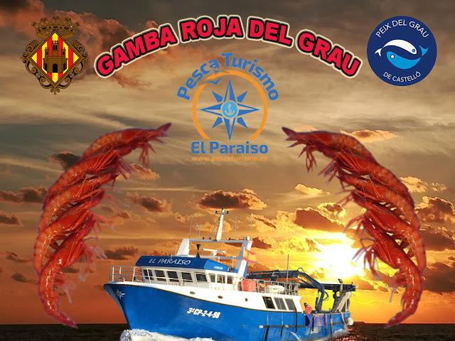 GAMBA%2BROJA%2BY%2BEL%2BPARAISO - El Paraiso y la gamba roja del Grau de Castelló una pesca sostenible, sin descartes y con futuro