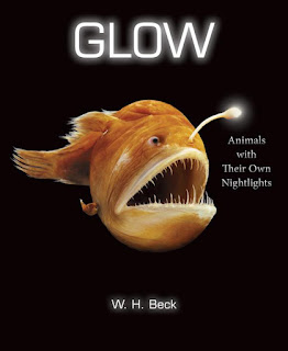Glow by W. H. Beck book cover nonfiction