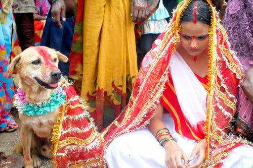 Human-Animal Weddings Exorcism by Marriage