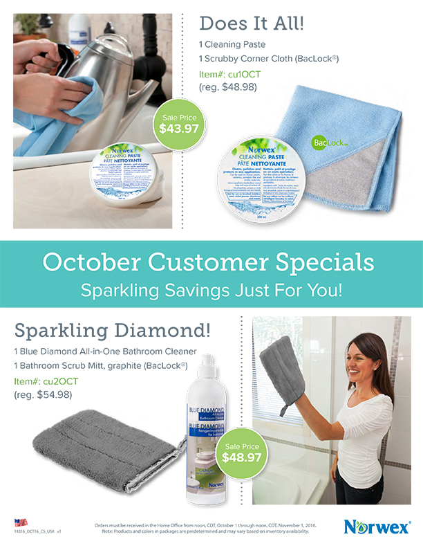 Blue Diamond All In One Bathroom Cleaner Msds: Norwex Independent Sales Consultant