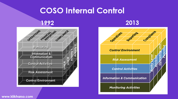 coso internal control