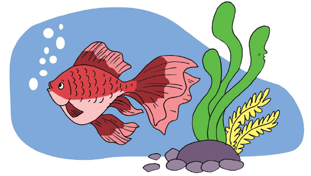 Gambar Ilustrasi Tema Binatang Kesayanganku Kunci Jawaban Buku Tema 1 Kelas 5 Sub Tema 1 Pembelajaran 2 Contoh Rpp Sd Dan Soal Sd