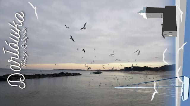 Morze zimą || mix zdjęć 4/2018