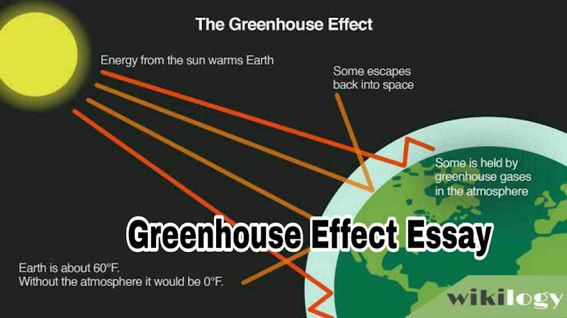 Greenhouse Effect Essay Composition