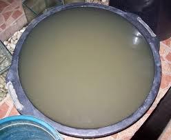 Warga Gampong Raya Tambo Butuh Air Bersih