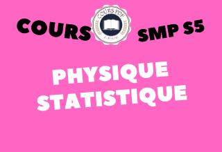 Physique Statistique SMP S5 - cours / td & exercices / examens / résumés [PDF]