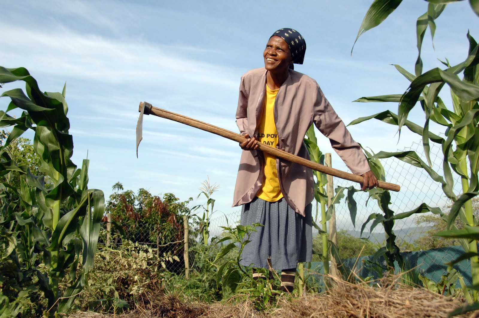 agriculture and rural development reconsidered debates over the future of smallholders remain central across the developing world writes steve wiggins
