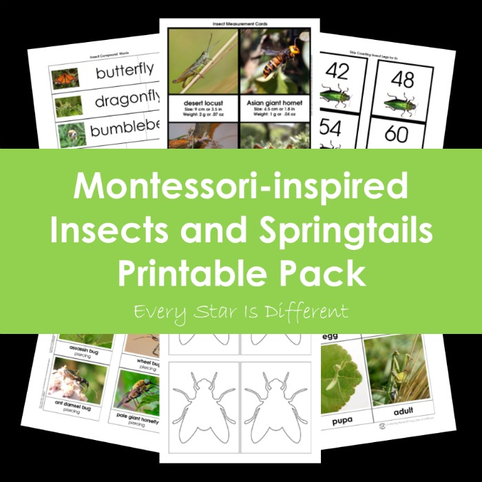 Montessori-inspired Insects and Springtails Printable Pack Bundle