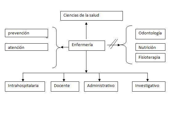 TRABAJO FINAL TÉCNICAS DE ESTUDIO: ORGANIZADORES GRÁFICOS