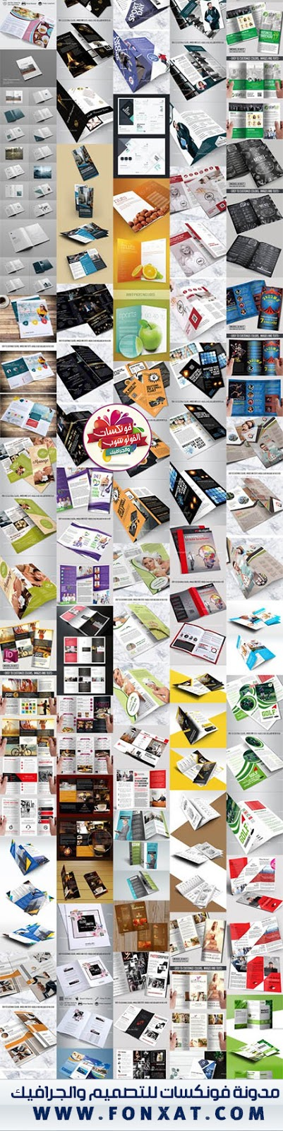 +60 Multipurpose Tri-Fold And Bi-Fold Brochures Templates