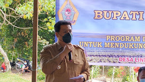 Misi 100 Hari, Bupati Samosir Tanam Perdana Bibit Kopi Partisipatif Starbucks di Lintongnihuta