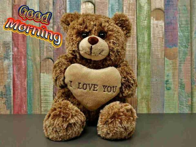 beautiful good morning pic of a cute teddy bear i love you