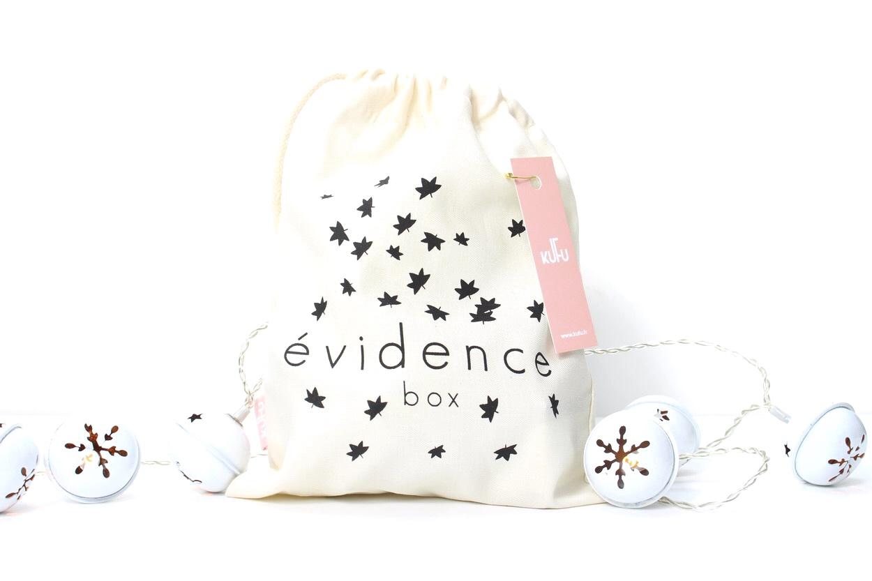 Evidence-box-novembre17