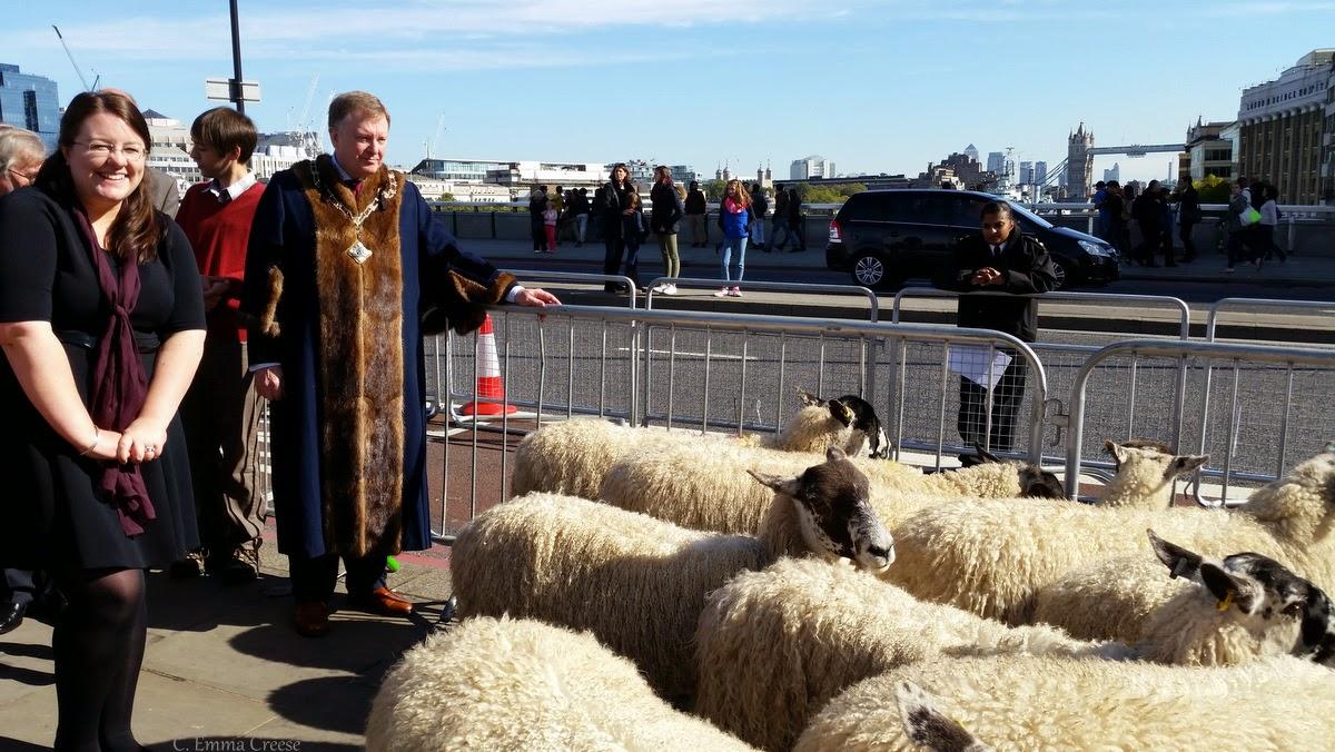 The day I drove Sheep across London Bridge - Adventures of a London Kiwi