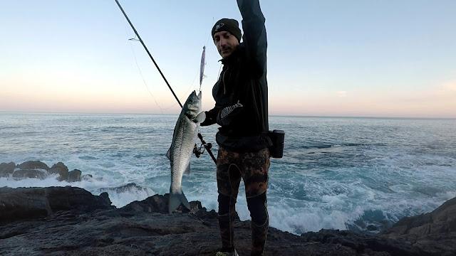 PORTADA%2BBLOG - Buscando lubinas en distintos escenarios de pesca
