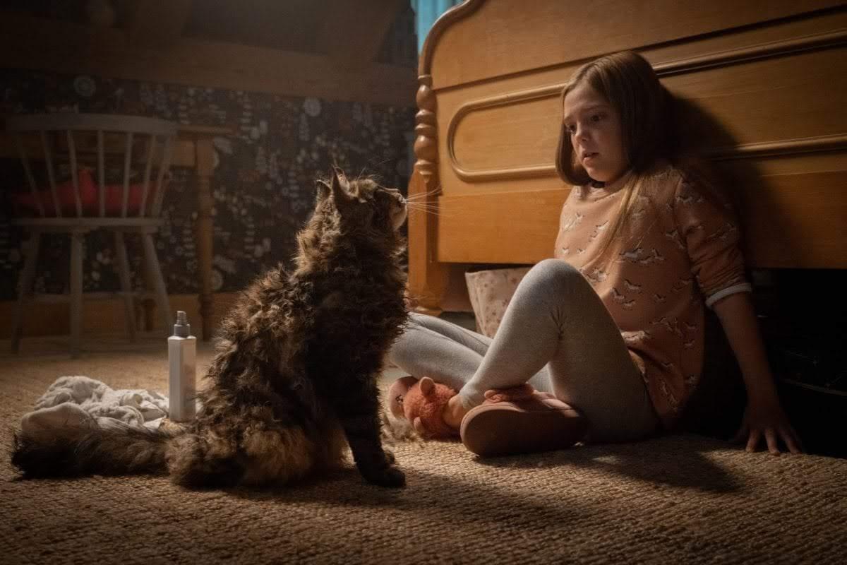 Box Office : 4月5日~7日の全米映画ボックスオフィスTOP5 - 30年ぶりに再映画化された現代版の「ペット・セマタリー」が、スティーヴン・キング原作のホラーとしては、史上2番めの封切り成績を記録した好発進の初登場第2位 ! !