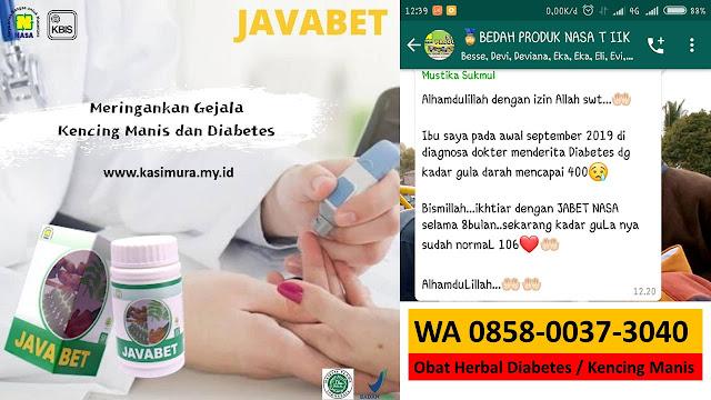 Jual Obat Diabetes Alami yang Terbukti Mampu Menurunkan Gula Darah Labuhan Haji Timur