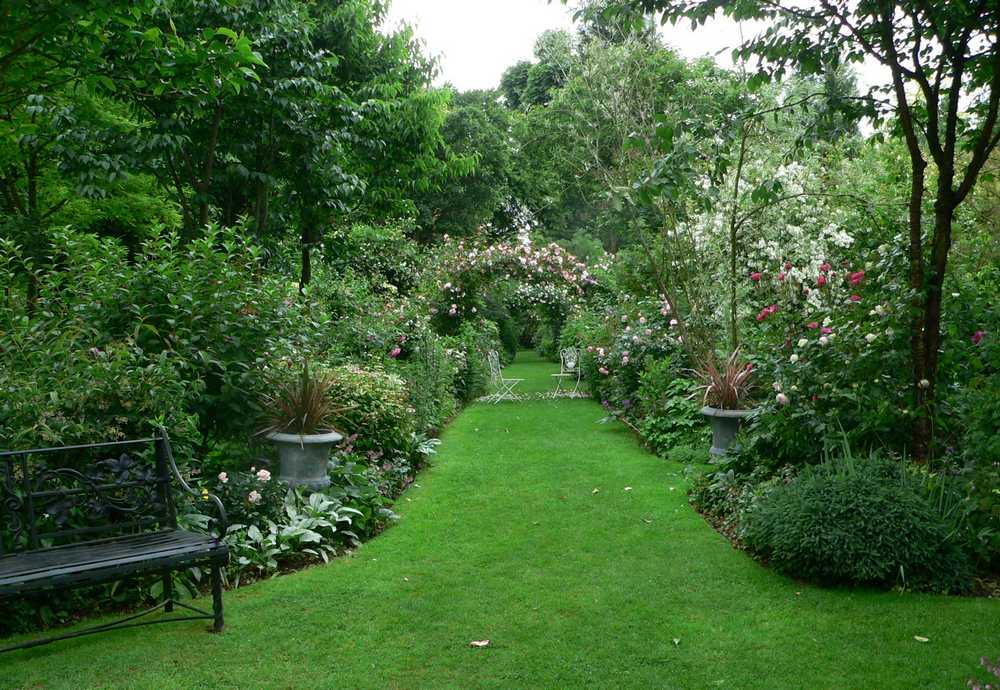 Hemerocalles En Normandie Le Jardin D Angelique