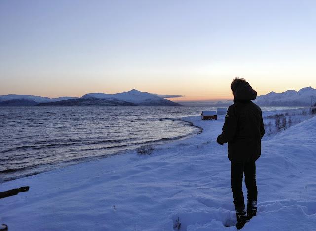 Jäämeren rannalla, Irja, Arnoya