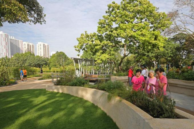 The therapeutic garden at Bishan-Ang Mo Kio Park.