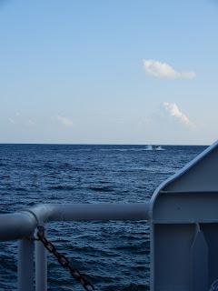 アマルフィのフェリーから見る海
