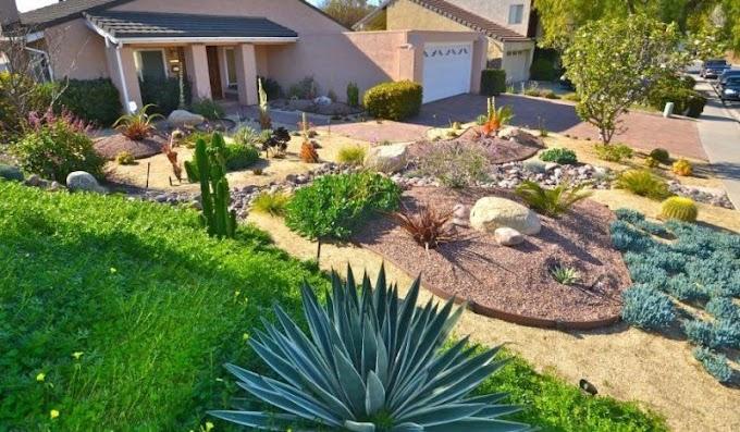 Six Steps to a Low-Maintenance Landscape