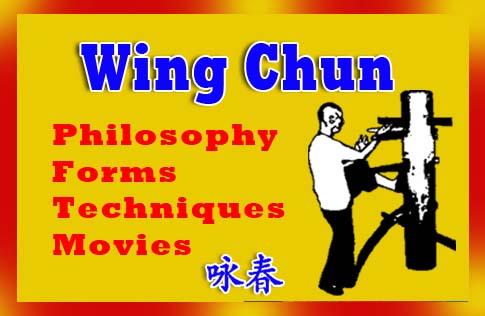 Wing Chun - Philosophy, Forms, Techniques, and Movies