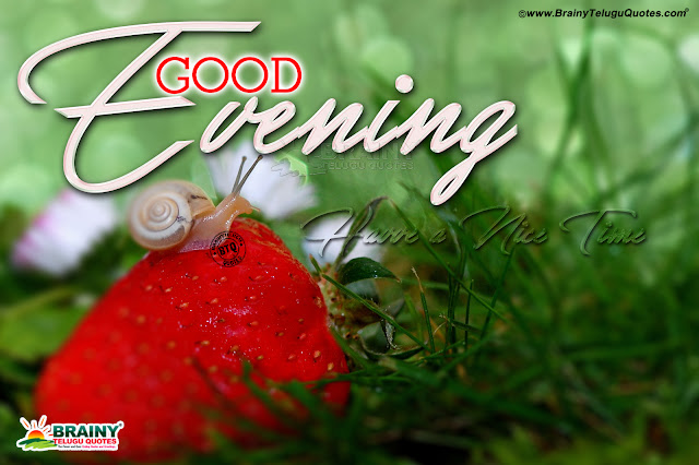 best good evening thoughts in english, english good evening greetings, have a nice day quotes in english