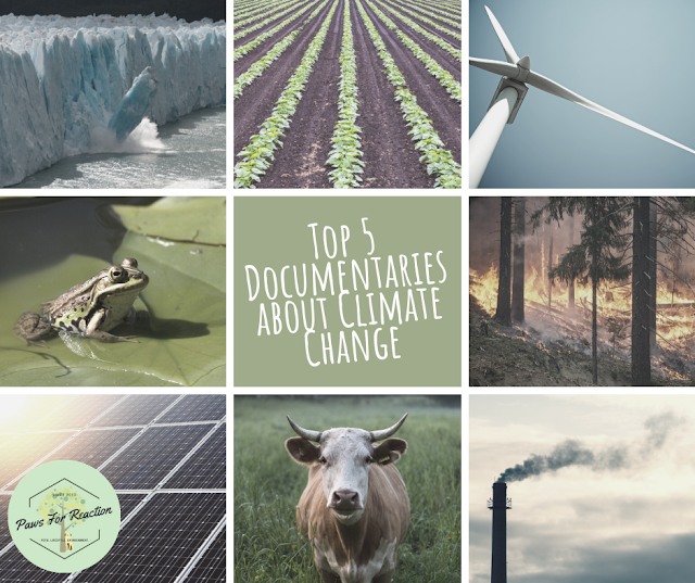 Top Five Friday: My five favourite climate change documentary films #FridayFive