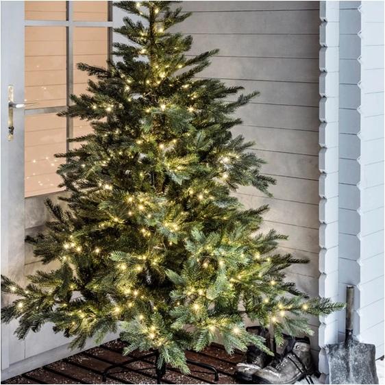 Saksıda Yılbaşı Ağacı Nasıl Yapılır