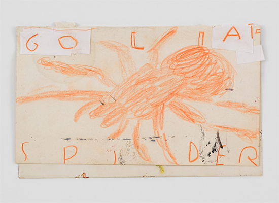 drawing Rose Wylie Orange Spider, 2019 Ballpoint pen, pencil, coloured pencil and collage paper 21.3 x 13.5 cm