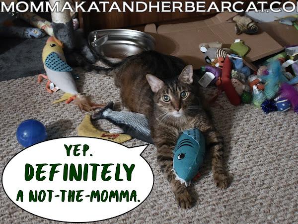 Momma's vacation[ish]