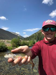 Fly Fishing, Fly Fishing Colorado