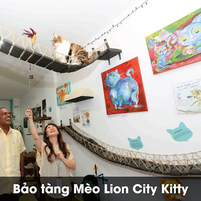Bảo tàng Mèo - Lion City Kitty – The Cat Museum, Muses and Mansion
