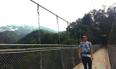 Blogger Eksis ikut jaga hutan di Indonesia