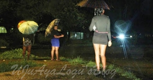 Imo brothel operators set-up task force to sanitize prostitution industry