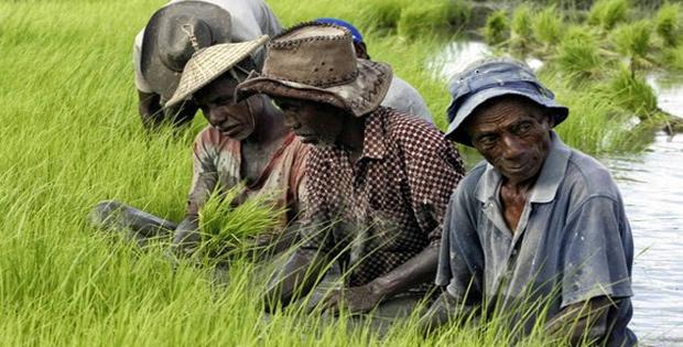 Keadaan Sosial dan Ekonomi Timor Leste