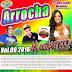 (CD) MAGNETICO LIGHT ARROCHA VOL 09 - 2016 ( DJ SIDNEY FERREIRA E PEDRINHO VIRTUAL)