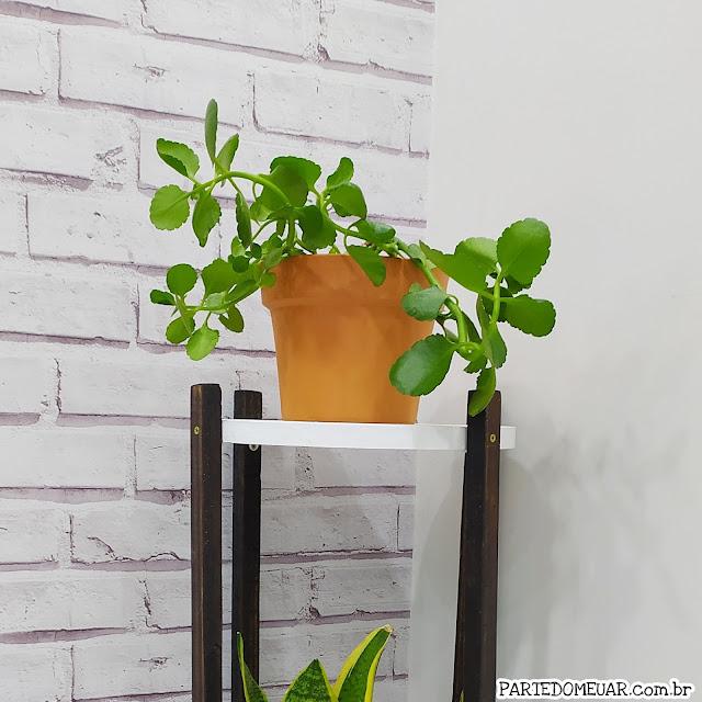 Como fazer suporte plantas