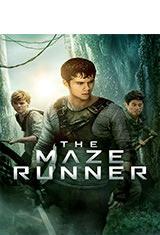 Maze Runner: Correr o Morir (2014) DVDRip Latino AC3 5.1 / Español Castellano AC3 5.1