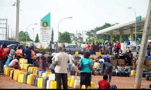 We Aren't Ready To Go On Strike - PENGASSAN, NUPENG