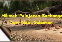 Hikmah Pelajaran Berharga Dari Nabi Sulaiman.