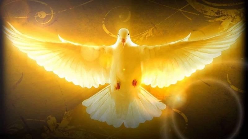 Um Estudo do Espírito Santo (3)