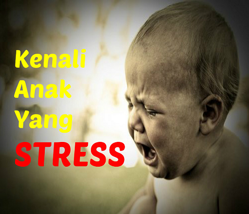 Cara Ketahui Jika Anak Kita Stress